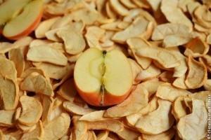 Hogyan készítsünk aszalt sárgabarackot?