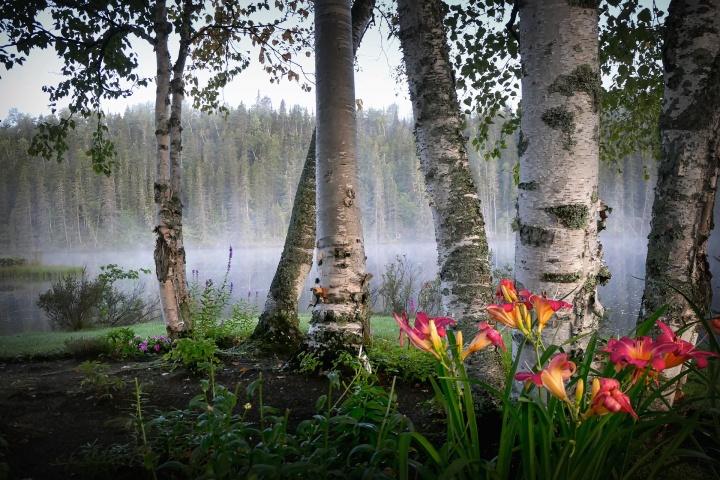 landscape-5052642_1920