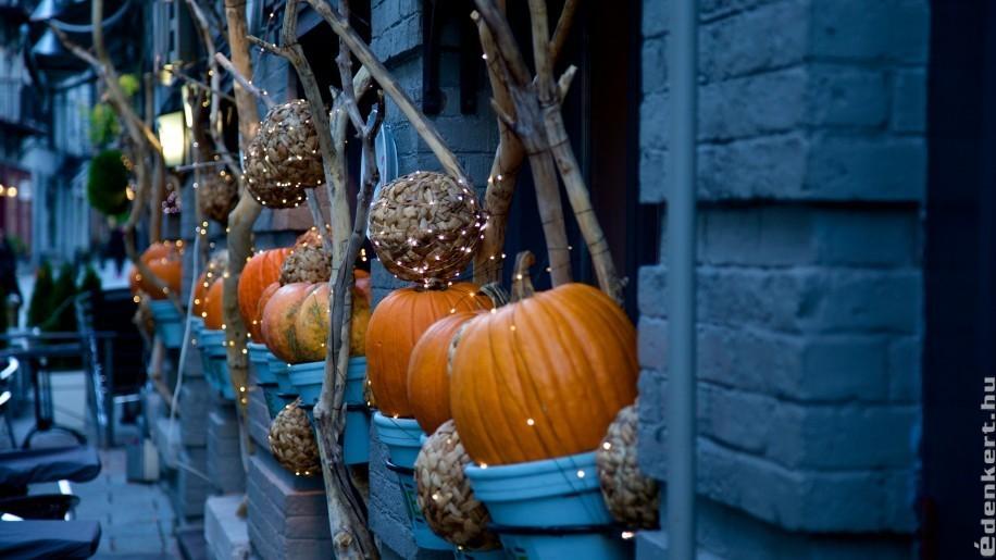Hogyan készítsünk meseszép őszi dekorációt?