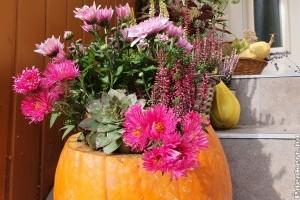 Gyönyörű dekor halloween tökből házilag