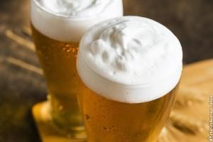 Magyar siker a csehországi sörversenyen
