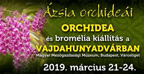 2019_tavasz_orchideakiallitas