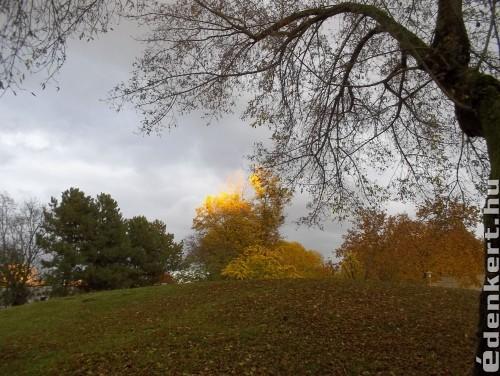 őszre hangolva
