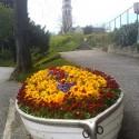 Virágok csónakban