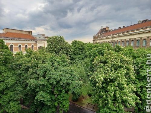 Gesztenye-kert