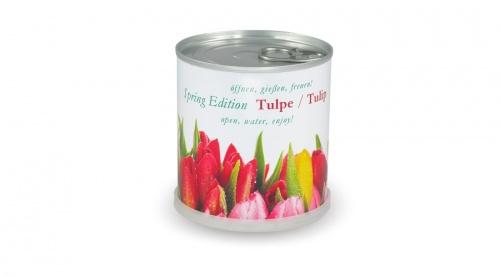 konzerv_tulipan