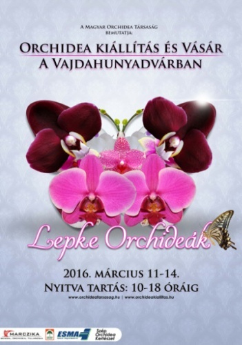 Orchidea kiállítás és vásár